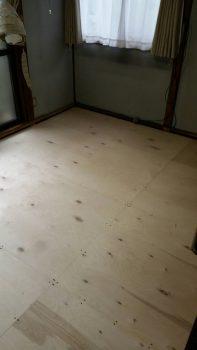 東京都練馬区旭町畳下床張替工事の記事画像